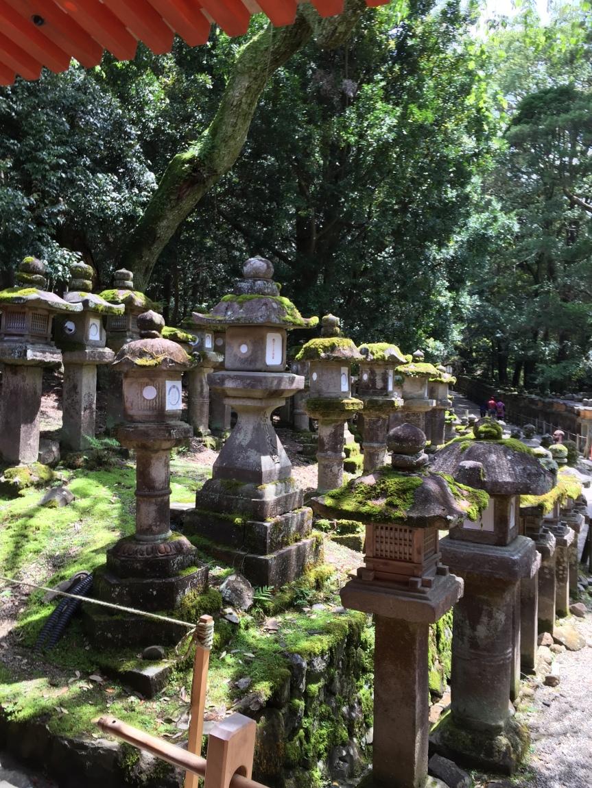 Shintoism in Nara!